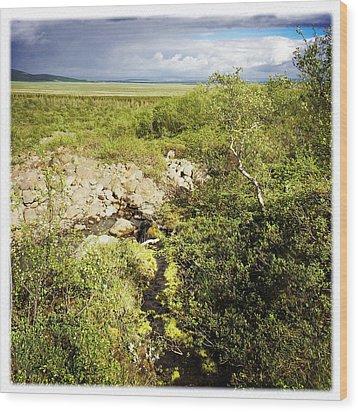 Summer Landscape In Iceland Wood Print