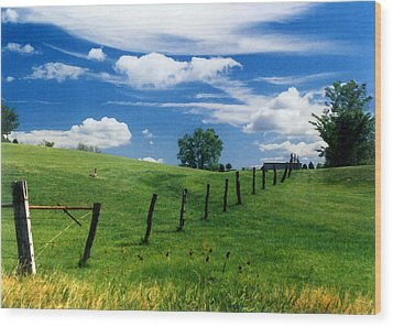 Wood Print featuring the photograph Summer Landscape by Steve Karol