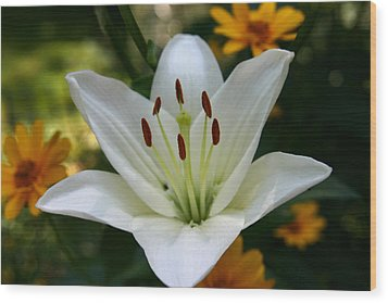 Summer Lily Wood Print by Denyse Duhaime