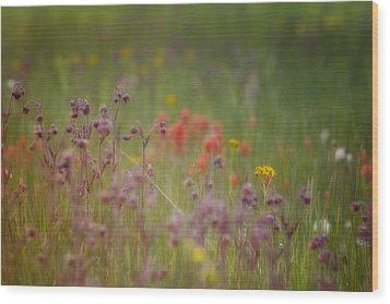 Wood Print featuring the photograph Summer Meadow by Ellen Heaverlo