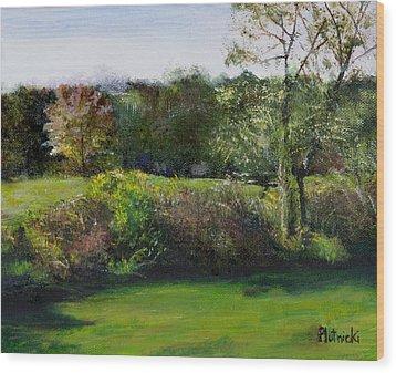 Summer Meadow II Wood Print