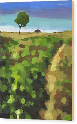 Summer Path Wood Print by Douglas Simonson