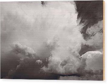 Summer Storm Wood Print by Steve Gadomski