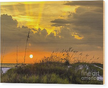 Summer Sun Wood Print by Marvin Spates