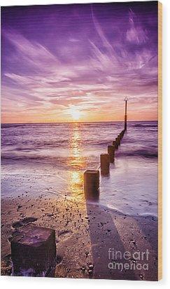 Summer Sunset Wood Print by Darren Wilkes