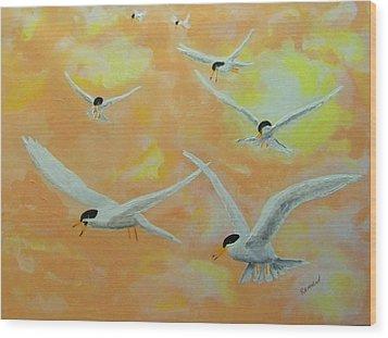 Summer Terns Wood Print by Rich Mason