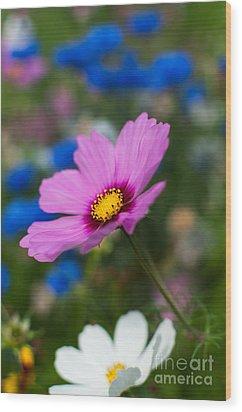 Summer Wild Blooms Wood Print by Matt Malloy