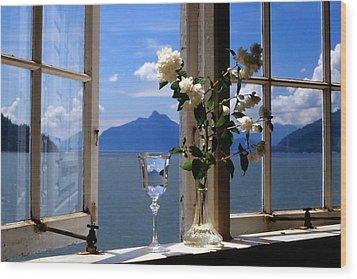 Summer Window-2 Wood Print by Michael Dohnalek