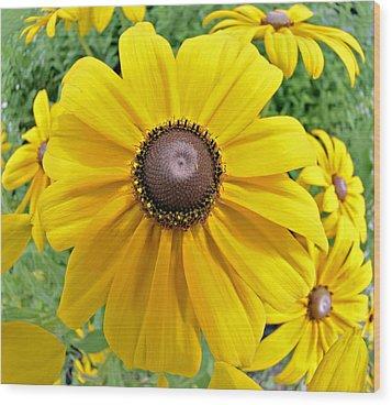 Summers Bloom Wood Print by Susan Leggett