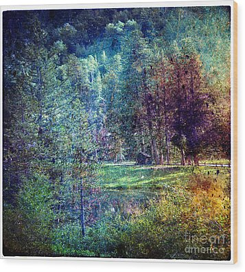 Summertime In Vail Wood Print