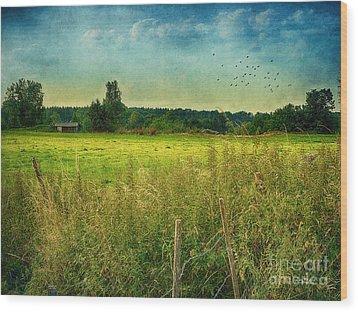 Summertime Wood Print by Jutta Maria Pusl