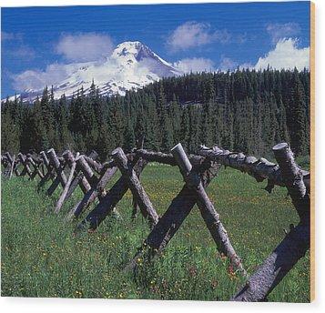 Summit Meadow Wood Print by Ken Dietz