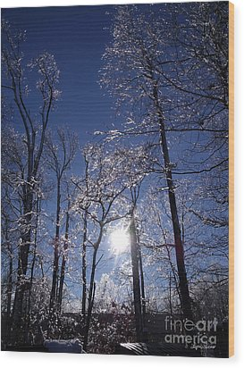 Wood Print featuring the photograph Sun And Ice by Lyric Lucas