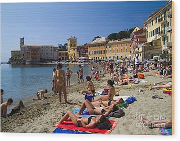 Sun Bathers In Sestri Levante In The Italian Riviera In Liguria Italy Wood Print by David Smith