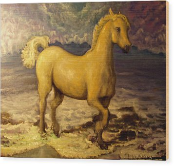 Sun Blessed Horse Wood Print by Graham Keith