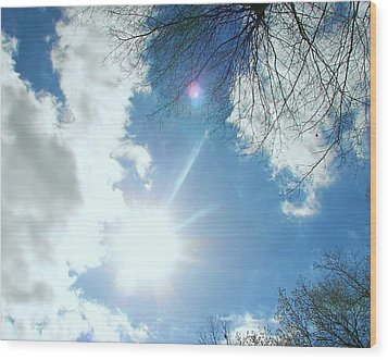 Wood Print featuring the photograph Sun Burst by Pamela Hyde Wilson