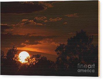Sun Cradle... Wood Print by Dan Hefle