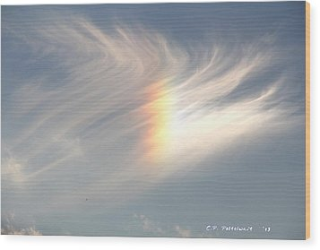 Sun Dog Wood Print by Carolyn Postelwait