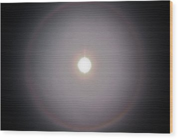 Sun Dog Wood Print by Joel Loftus