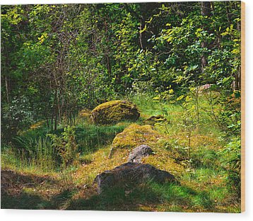 Wood Print featuring the photograph Sun In The Forest by Leif Sohlman