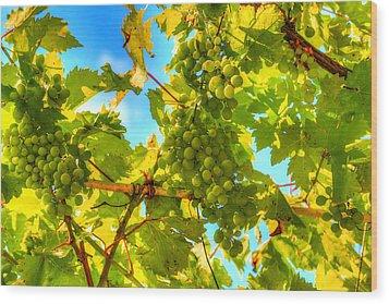 Sun Kissed Green Grapes Wood Print by Eti Reid