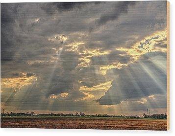 Sun Rays Over A Field Wood Print by Julis Simo