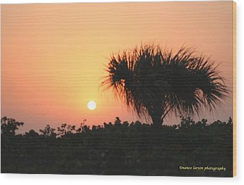 Sun Rise And Palm Tree Wood Print