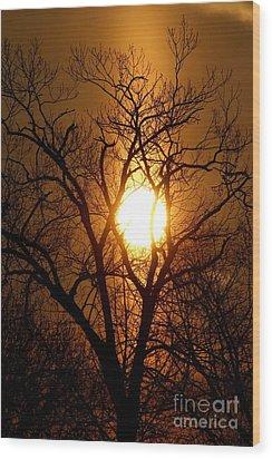 Sun Rise Sun Pillar Silhouette Wood Print