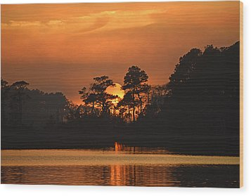 Wood Print featuring the photograph Sun Setting In Trees by Bill Swartwout