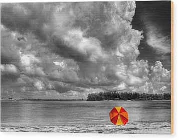 Sun Shade Wood Print by HH Photography of Florida