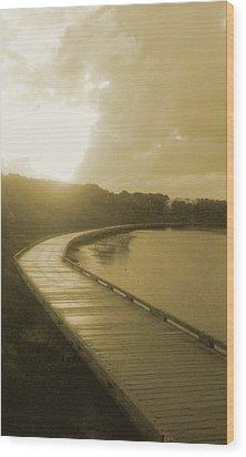 Sun Shower Wood Print by Amanda Holmes Tzafrir