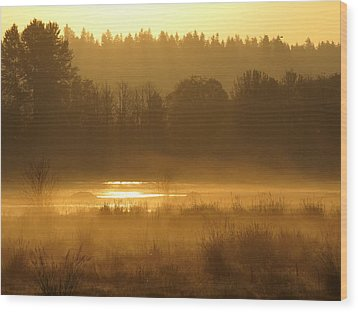 Sun Up At The Refuge Wood Print