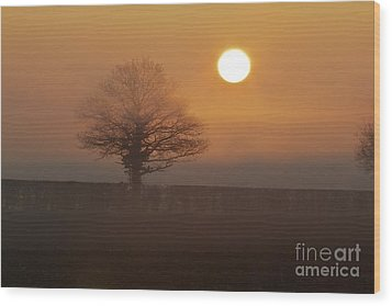 Wood Print featuring the photograph Sun Up by Gary Bridger