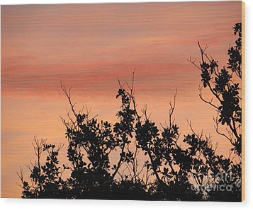 Wood Print featuring the photograph Sun Up Silhouette by Joy Hardee