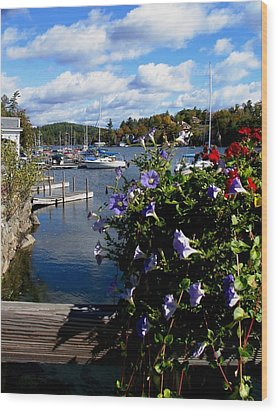 Sunapee Harbor 1 Wood Print by Will Boutin Photos