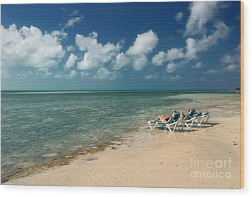 Sunbathers On The Beach Wood Print by Amy Cicconi