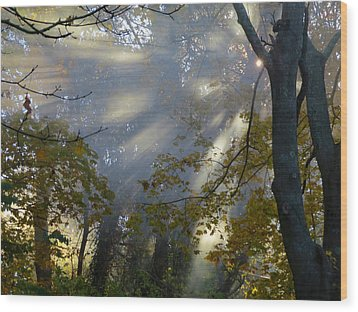 Wood Print featuring the photograph Sunbeam Morning by Dianne Cowen