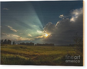 Wood Print featuring the photograph Sunbeam by Rose-Maries Pictures