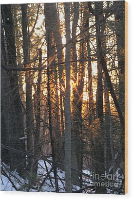 Sunblaze-1 Wood Print by Melissa Stoudt