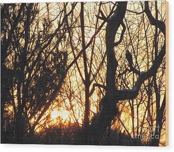 Sunblaze-3  Wood Print by Melissa Stoudt