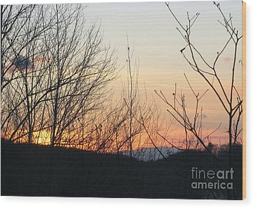Sunblaze-5 Wood Print by Melissa Stoudt
