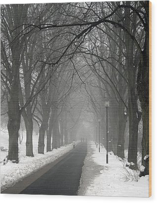 Sunday Afternoon Winter Wood Print by Odd Jeppesen