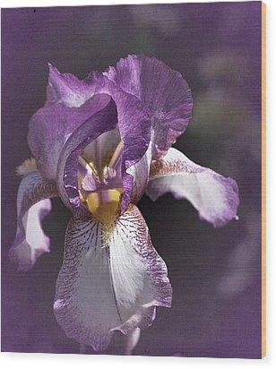 Sunday Iris No. 1 Wood Print