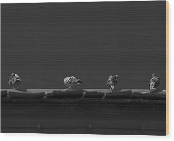 Sunday's Bath Wood Print by Mario Celzner