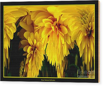 Sunflower Abstract 1 Wood Print by Rose Santuci-Sofranko