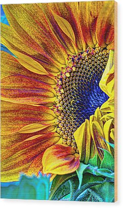Sunflower Abstract Wood Print by Heidi Smith