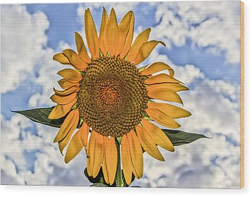 Wood Print featuring the digital art 00008 Sunflower And Clouds by Photographic Art by Russel Ray Photos