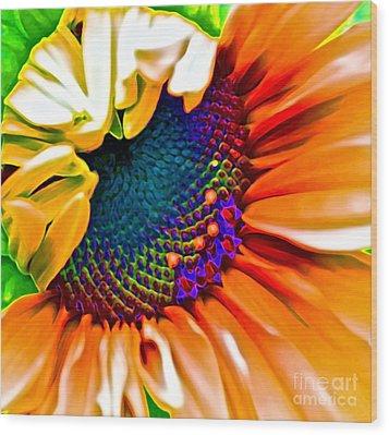 Sunflower Crazed Wood Print by Gwyn Newcombe