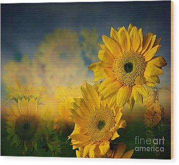 Sunflower Garden Wood Print by Shirley Mangini