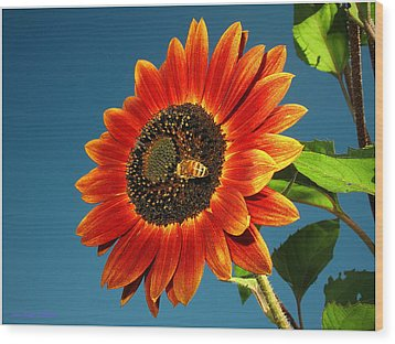 Wood Print featuring the photograph Sunflower Honey Bee by Joyce Dickens